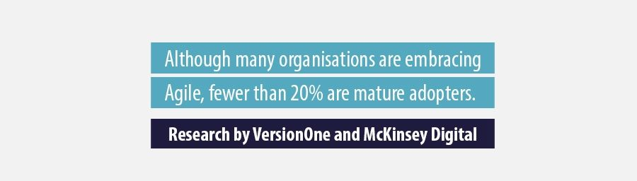 Quote Research by VersionOne and McKinsey Digital