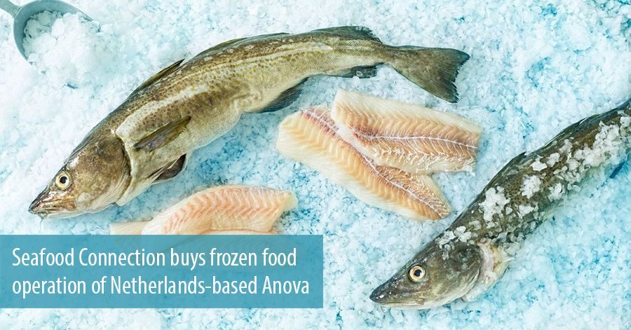 Seafood Connection buys frozen food operation of Netherlands-based Anova