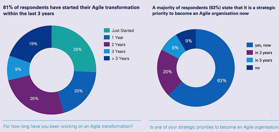 Working on an Agile transformation