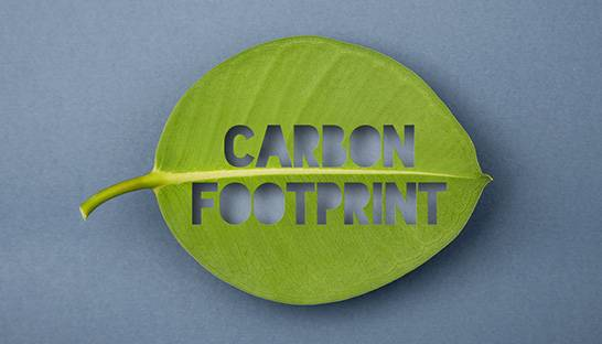 Independent consultants more concerned about carbon footprint