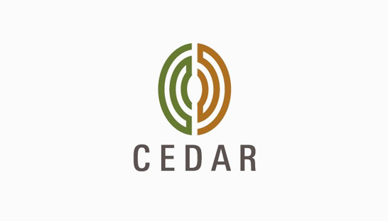 Consulting firm in Europe: Cedar Management Consulting