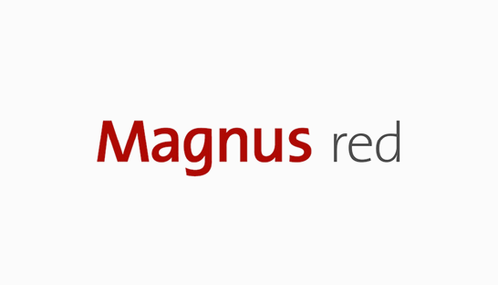 Consulting firm in Europe: Magnus Red