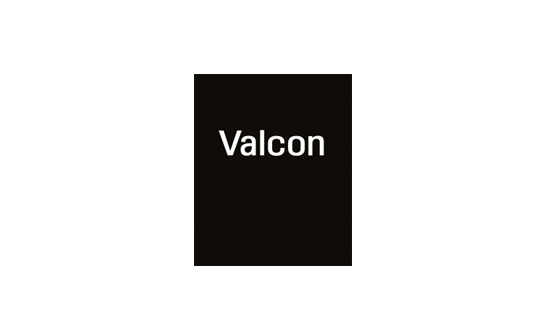 Consulting firm in Europe: Valcon